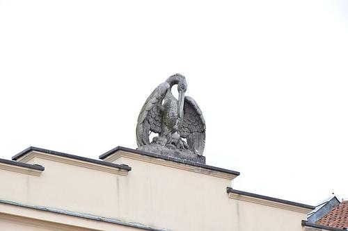 pelikan-warschau